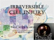 Irreversible Cell Injury dr varghese