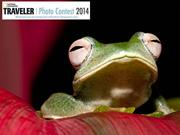 NG Traveler Photo Contest 2014 (part 3)
