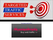 Purchase Web Traffic at Maxi Web Visits