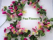 1-Spring-28-flowers-Sweet Peas-5