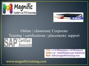 sap sd online training in usa