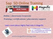 sap sd online training in us