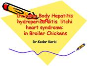 Angara goth,Inclusion Body Hepatitis hyd