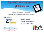 sap mdm online training in us