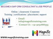 sap crm online training in usa