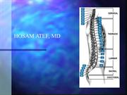 low_back_pain_talk2 (2)