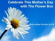 Celebrate This Mother's Day with The Flower Box