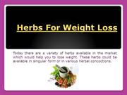 Herbs To Lose Weight Naturally
