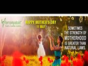 Choose the Best Mothers Day Flowers and Gifts