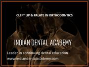 Cleft Orthodontics- IDA 2010 /fixed orthodontic courses by IDA