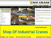 Ace Crane - Jib Cranes and Grantry Cranes