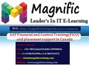 SAP Financial and Control Training and placement support in Canada