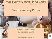 THE FANTASY WORLD OF ANTS