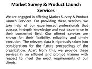 Market Survey & Product Launch Services