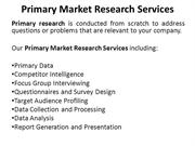 Primary Market Research Services