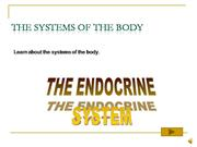 The Endocrine System PPS