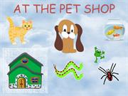 PET SHOP INTRODUCTION3