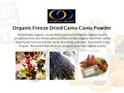 Organic Freeze Dried Camu Camu Powder