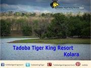 Introduction to Tadoba Tiger King Resort