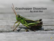 Grasshopper Dissection Alliance (English)