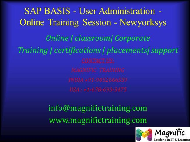 SAP BASIS - User Administration - Online Training Session