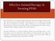 Effective Animal Therapy in Treating PTSD