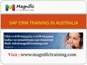 sap crm functional online training in usa
