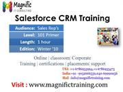 Salesforce online training classes@magnific