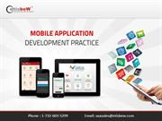 iPhone Application Development Creating Highly Efficient iPhone