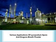 Various Applications Of Lycopodium Spore And Dragons Breath Powder