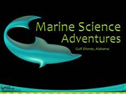 Marine Science Adventures