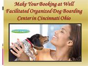 Make Your Booking at Well Facilitated Organized Dog Boarding Center in
