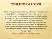 Horse barn fly systems