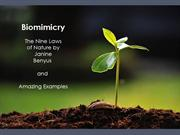 Biomimicry - The Nine Laws of Nature and Amazing Examples