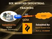 6 months training ppt