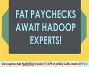 Fat paychecks awaits Hadoop experts!