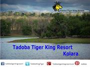 Tadoba Tiger King Resort : A Luxury Hotel in Tadoba