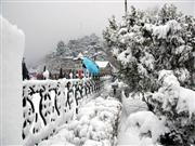 Shimla hotels, Shimla resorts, shimla hi
