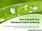 How to Benefit from Hydroponic Indoor Gardening