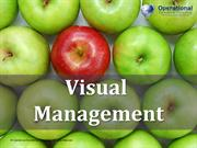 Visual Management by Operational Excellence Consulting