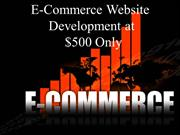 eCommerce Website Development Company In India
