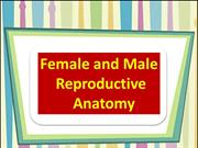 FEMALE AND MALE REPRODUCTIVE ANATOMY