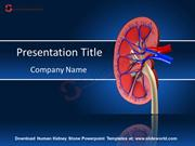 Human Kidney Stone Powerpoint Templates - SlideWorld
