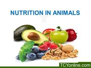 nutrition in animals class 8th done approved(Mayur) JS