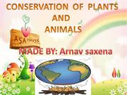 conservation of plants and animal