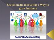 Social media marketing  Way to grow business