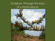 Art & Exhibitions_Sculpture Placement Through the Eyes of a Horticultu