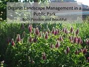 Conservation_Organic Landscape Management in a Public Park_2 of 2