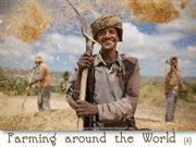 Farming Around The World (4)
