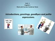Greetings, goodbyes and polite expressions